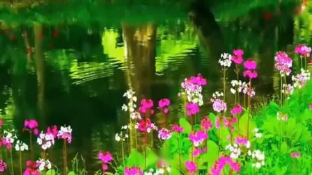 Maybe Sometimes--音悦Tai-音乐-高清完整正版视频在线观看-优酷