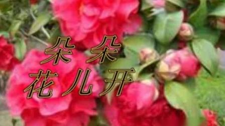朵朵花儿开演唱:高铭璐 作词:温喆吉 作曲:雷远生 伴唱:三兄弟2012.7.