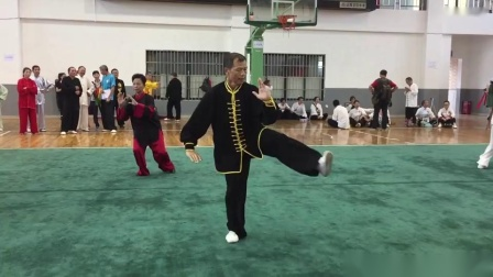 陈式太极拳 自编套路表演