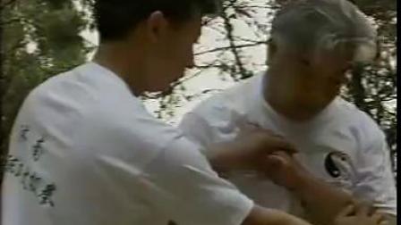 洪传陈式太极拳传人刘成德老师