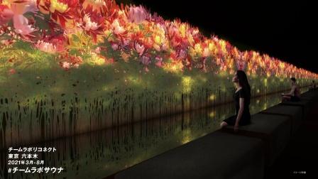 teamLab Reconnect: Art with Rinkan Sauna Roppongi