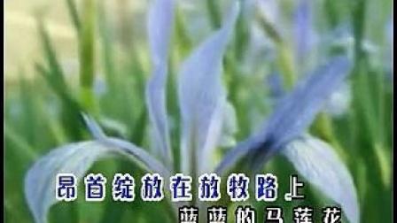 蓝蓝的马莲花-德德玛_标清-音乐-高清完整正版视频在线观看-优酷