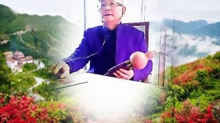 张鲁松.葫芦丝独奏.《山野的风》G