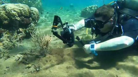 Orcatorch虎鲸 D910潜水手电筒 摄影灯水下评测 全方位视觉