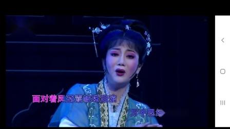 10.董云华 锡剧《风流状元·面对着凤冠霞帔》