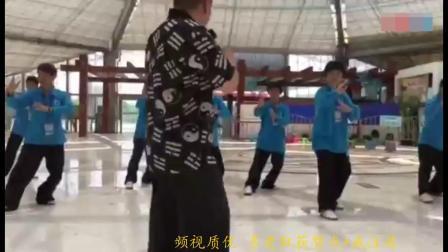 傅清泉导师讲解 揽雀尾单鞭提手上势