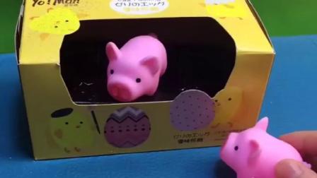 猪妈妈让小猪自己玩吧,小猪们开始玩了,找自己的玩具