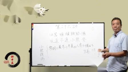 《伤寒论》齐名天下第一方:用大道至简的方式讲解小柴胡汤 (1)