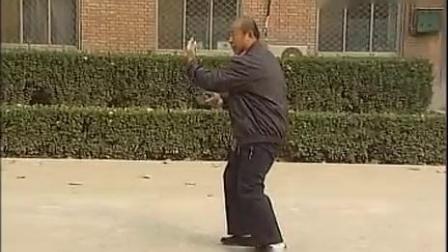 南宫潘之心演练武式太极拳及推手