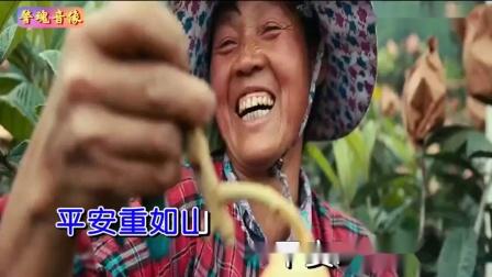 国泰民安(金婷婷)