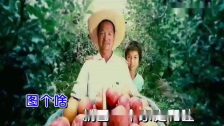 国泰民安(刘和刚)