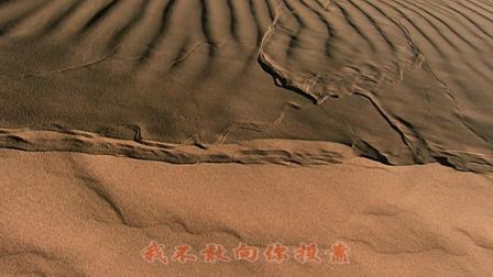 孙露--沙漠情歌【dj--慢摇】★