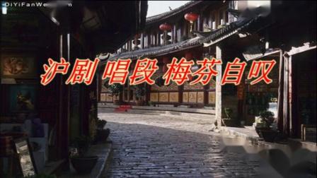 沪剧 唱段 梅芬自叹 李惠华
