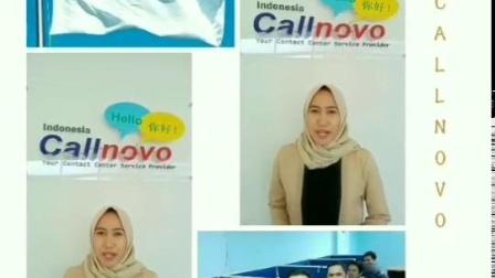 东盟跨境电商市场,印尼增长空间最大!Callnovo东南亚客服视频(节选)
