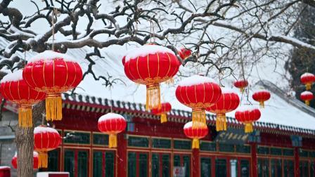 银杏树朗诵《大雪中的中国》