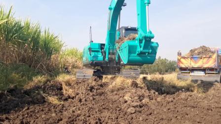 进口神钢sk140lc-11挖掘机和卡车EP.7949