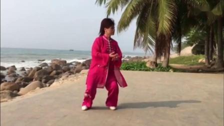 徐勤兰陈式12式  新配音