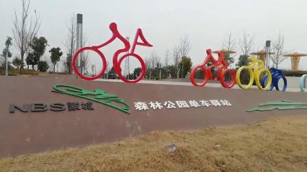 2021年1月16日森林公园单车驿站