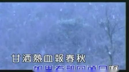 铁窗泪 迟志强 MV版