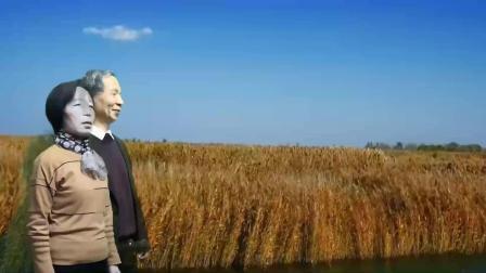 《我在纳林湖等着你》