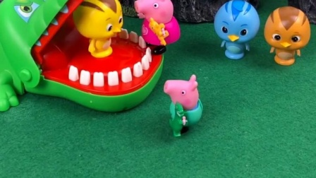 乔治家的小鸡不见了,佩奇带着乔治去找了,果然在大鳄鱼这里