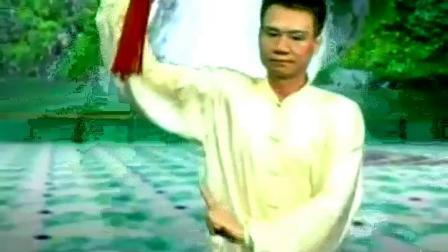 陈思坦42式太极剑正面(重配乐《鸿雁》)