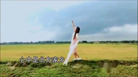 二胡曲【鸿雁】演奏:李玉玲老师