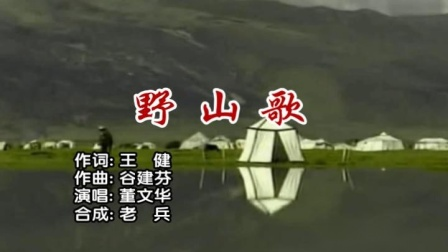 董文华-野山歌vcd普