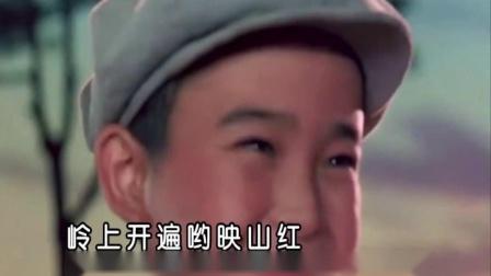 董文华-映山红vcd宽