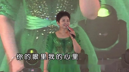 董文华-共享幸福vcd宽