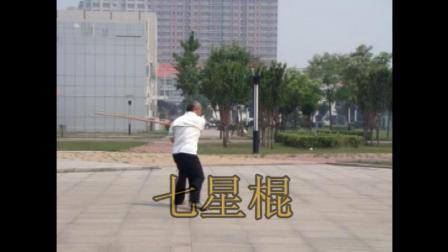 """姜维武术-棍术""""七星棍""""赵双定演示"""