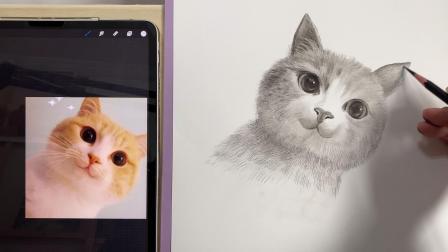 每日一画:素描小猫咪全程示范快进版.mov