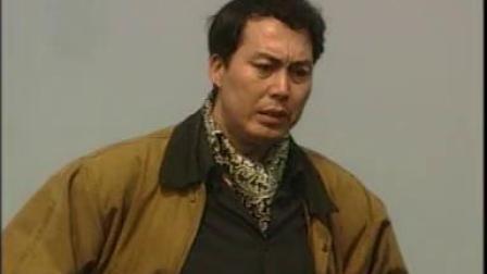 新霸王花(1997年陈小艺主演电视剧)16