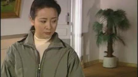 新霸王花(1997年陈小艺主演电视剧)19