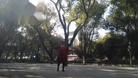 孝感晨练广场舞(中三)《父亲的草原母亲的河》