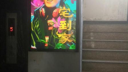 江南春城A区1号楼1单元/1层/电梯等候厅/右侧_T3