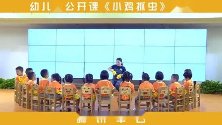 师讯幼儿园公开课-《小鸡抓虫》