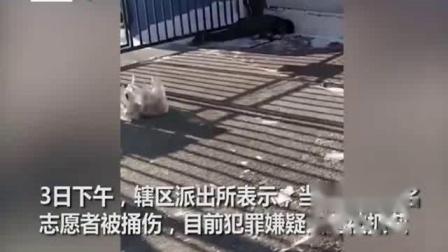 哈尔滨一志愿者被捅身亡凶手被抓获 家属悲痛回忆:自发当志愿者