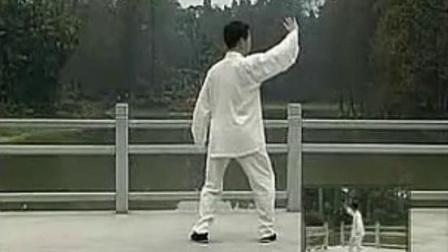 王二平陈式24太极拳