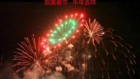 欢度春节-牛年吉祥 -焰火花絮共赏