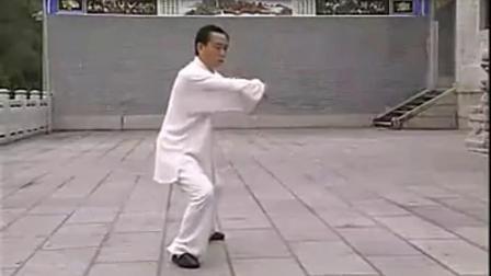 赵幼斌老师85式太极拳演示-王爷株洲