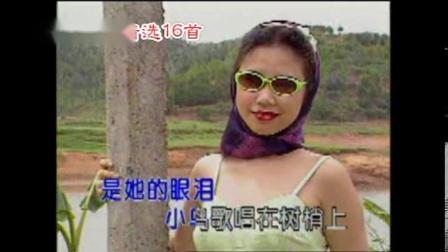 中外民歌精选卡拉OK字幕歌曲16首《我的太阳》之DVD(时长:58分钟)