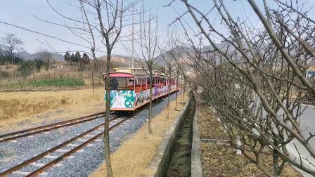 【小火车】建议改成:铜陵白天普速客车全部停运后留守车迷的看车生活