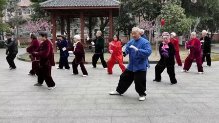 张忠杏领队演练传统杨氏八十五式太极拳