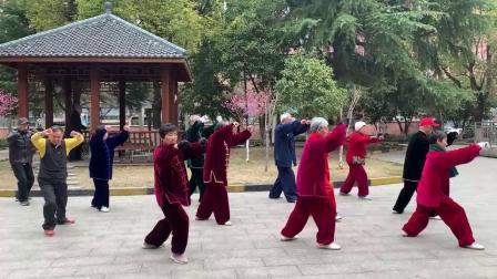 肖金仙带领罗阳太极拳队晨练24式太极拳mp4