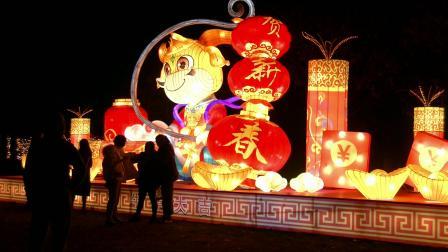 中国和海《光影秀》(德阳.德新镇)