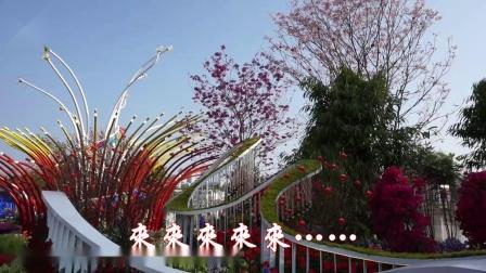 2021.02.14广州第28届园博会