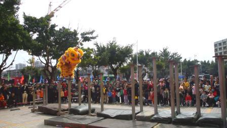 2021湛江市赤坎庆武堂龙狮团  梅花桩  高桩醒狮  霞山金纺服装城新春拜年醒狮表演