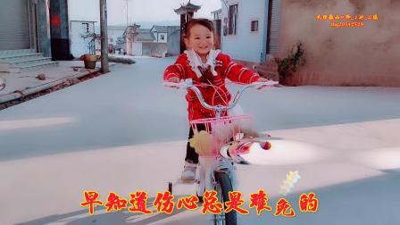 《梦醒时分》-演唱:韩宝仪-大理巍山