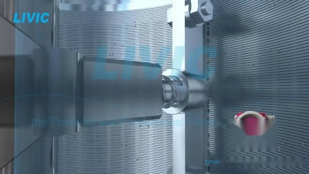 刮刀式 自清洗过滤器 工作原理LIVIC滤威DFM系列